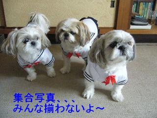 oyako_20071116_1