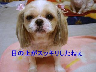 bibi_20061221_1
