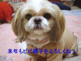 bibi_20061230_1