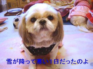 bibi_20070107_1