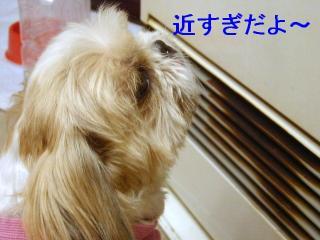 bibi_20070130_2