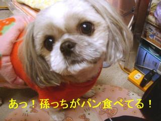 love_20061227_1