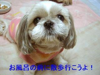 love_20070126_2