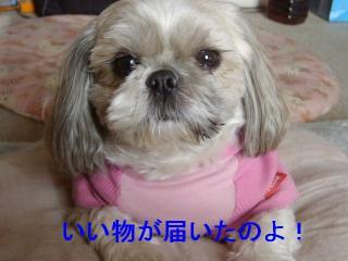 love_20070128_1