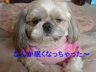 love_20070128_2