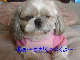 love_20070128_3