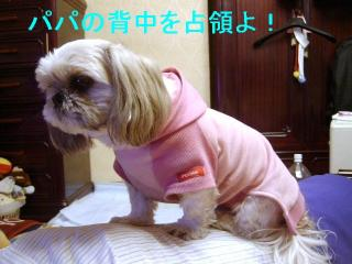 love_20070129_2