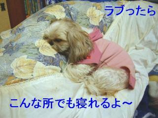 love_20070202_1