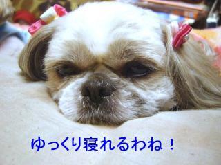 love_20070216_2
