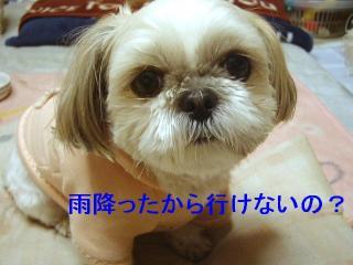 mint_20070126_1