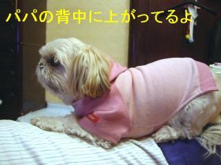 mint_20070129_1