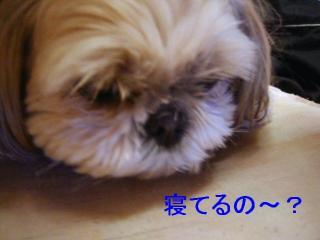 mint_20070201_2