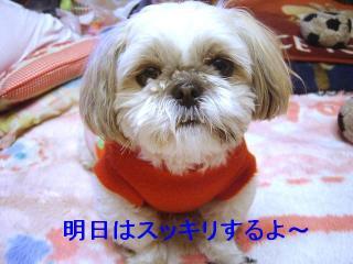 mint_20070214_1