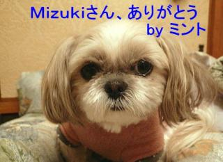 mint_20080102_15