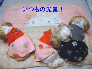 oyako_20061229_1