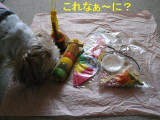 present_20080102_4