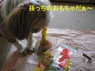 present_20080102_5