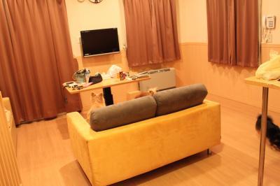 IMG_7139_convert_20101203023950.jpg