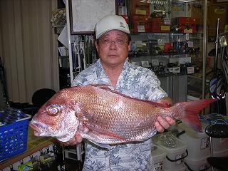 山崎さん 65cm
