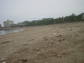 地元のゴミかと思えば、対岸から来た漂着物が多数!