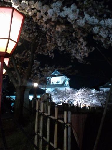 (夜桜)石川門