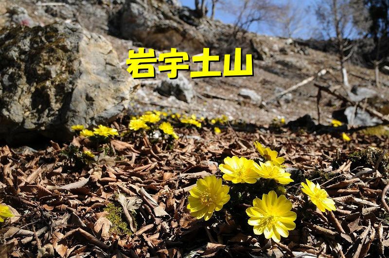 photo-hg002.jpg