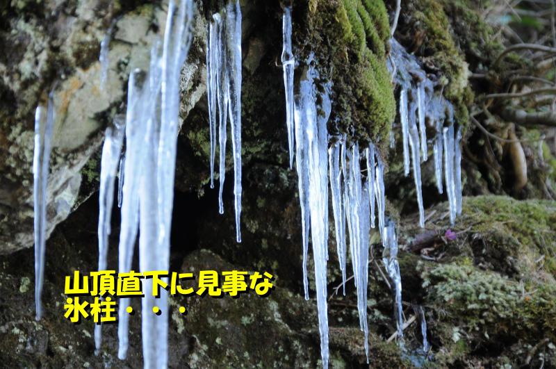 photo-hg051.jpg