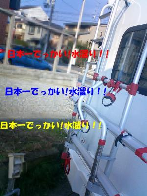 CIMG1802.jpg