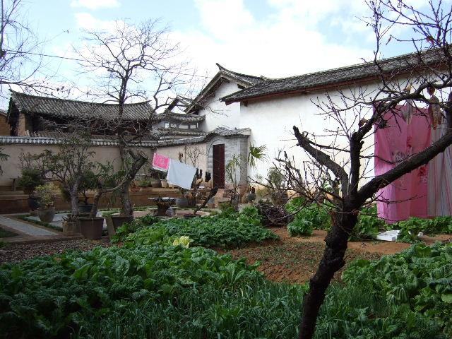 古道客桟菜園
