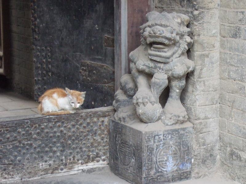 王家大院獅子と猫