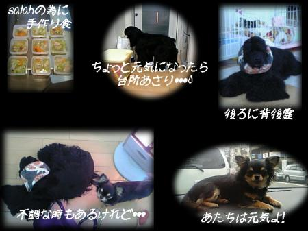 2006-2-20.jpg