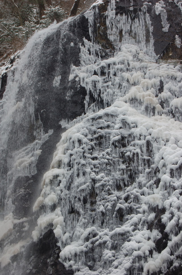白猪の滝0319