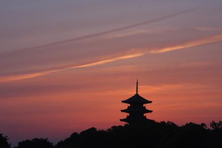 kokubunji_0515_1.jpg