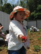 幼稚園体験:第1回目5