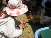 幼稚園体験:第1回目7