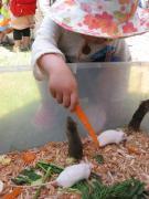 幼稚園体験:第1回目8