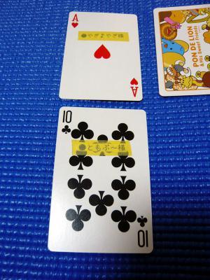12_20101017150830.jpg