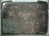 NeutralA0022_20090202030944.jpg