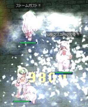 SD5_20090624192110.jpeg