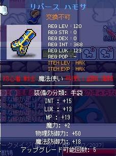 120手袋3-MAX