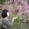 2010桜5
