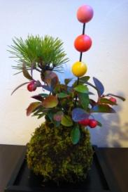 2010苔玉①
