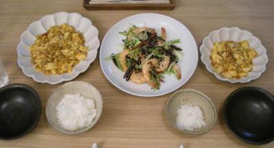 麻婆豆腐と海老と山椒と鷹の爪の炒めモノ 2008.9.8