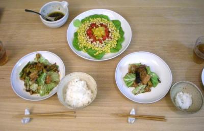 彩りサラダと回鍋肉 2008.9.26