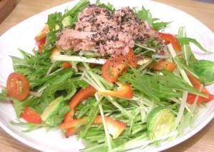 水菜とツナの中華サラダ 2009.1.19