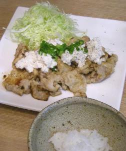 味噌胡麻焼き 豆腐をたっぷりのせて 2009.2.3