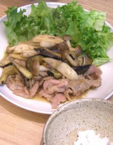 野菜たっぷり、生姜焼き 2009.2.13