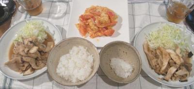 生姜焼きと体に良い炒めモノ!2009.5.26