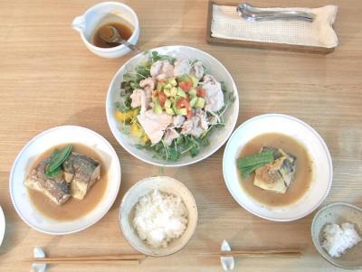 サバの味噌煮と豚しゃぶサラダ 2009.6.4