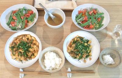 麻婆豆腐とグリーンサラダ 2009.6.8